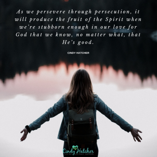 This series of posts on persecution, perseverance, and prayer – so we can understand what's happening when it's happening, and know what to do when it happens.